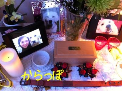 20111215-101853.jpg